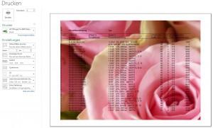 Ein Bild wird mit der Datei gedruckt.