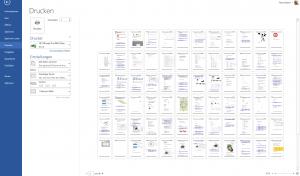 Seitenansicht in Word - viele Seiten